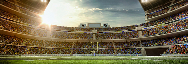 5 Commonly Overlooked Items in Stadium Safety